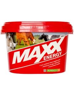 MAXX Energy - 22.5kg