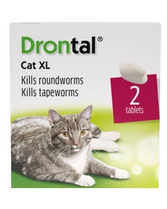 Drontal Cat XL Tablets - Pack of 2