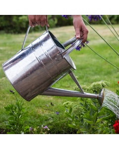 Galvanised Watering Can - 9L