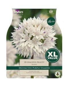 Taylor's Bulbs Graceful Beauty Allium Bulbs - Pack of 18