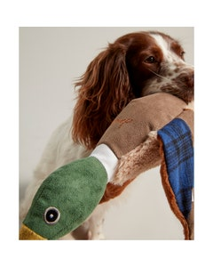 Joules Go Quackers Dog Toy