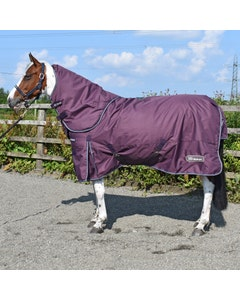 John Whitaker Aster Mediumweight 150g Turnout Rug With Detachable Neck