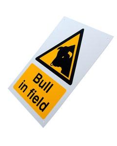 Bull in Field Sign