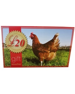 £20 In Store Only Gift Voucher