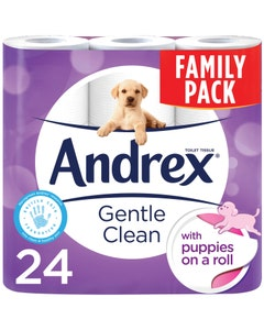 Andrex Gentle Clean Toilet Roll Family Pack - Pack of 24