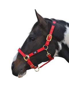 Hy Deluxe Red Padded Head Collar - Full