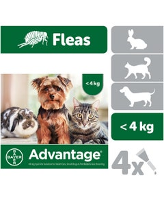 Advantage 40 Spot-On for Small Cats, Dogs and Pet Rabbits - 4 x 0.4ml