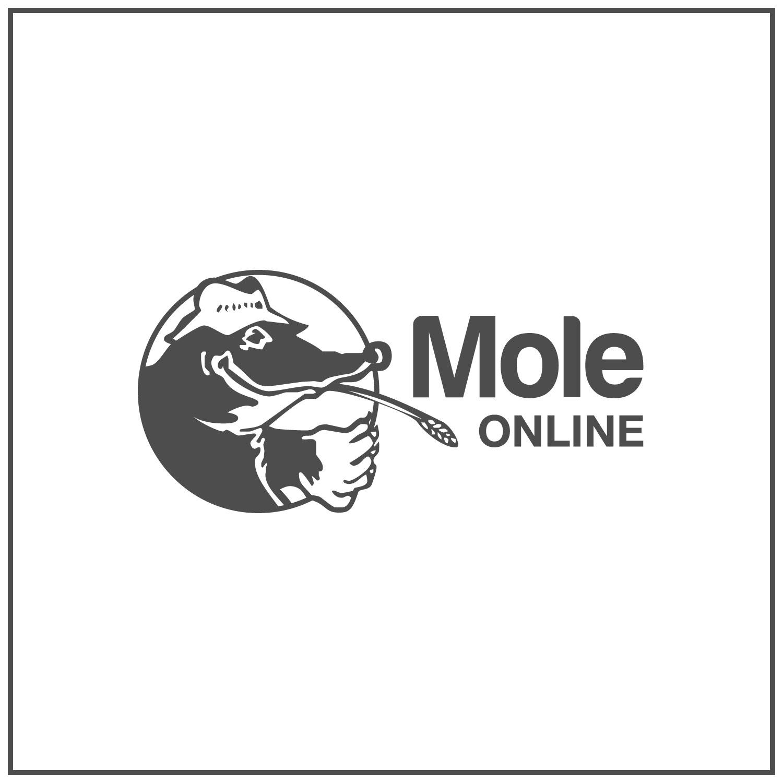 An image of Doodlebone Dog Lead - Bold Cyan