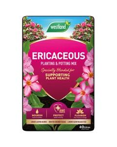 Westland Ericaceous Planting and Potting Mix - 60L
