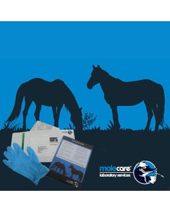 Horse Faecal Worm Egg Count Kit
