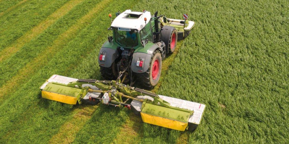 Mid-season management to maximise  forage production