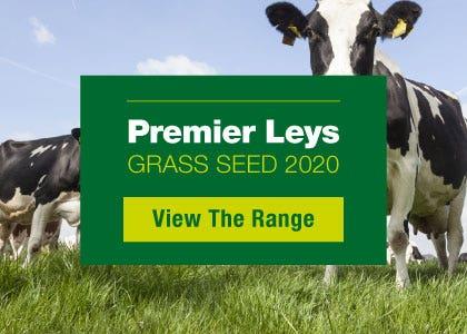 premier leys grass seed