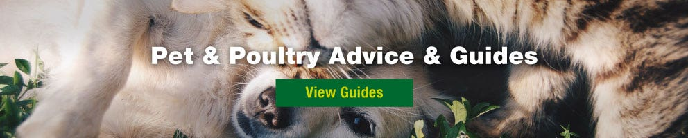 pet and poultry advice and guides - view guides