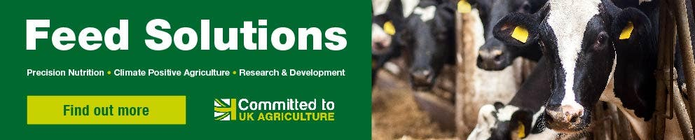 Feed Solutions