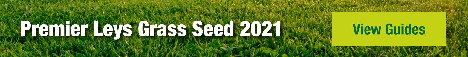 Premier Leys grass seed 2021