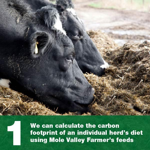 We can calculate the carbon footprint of an individual herd's diet using Mole Valley Farmer's feeds