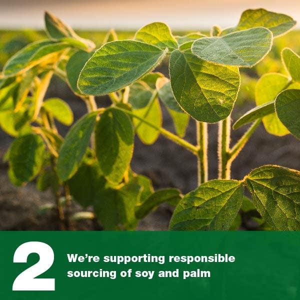 We're supporting responsible sourcing of soy and palm