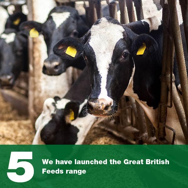 We have launched the Great British Feeds range